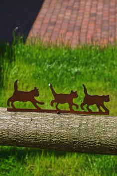 Katzenbande zum Schrauben