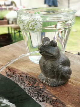 Wasserpumpe kleiner Frosch