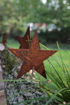 Stern zum Schrauben