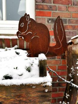 Eichhörnchen mit Nuss zum Schrauben