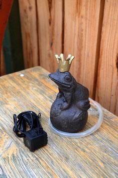 Wasserpumpe Kugelfrosch