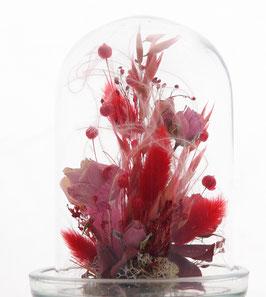 Fleur séchées (dominante rouge)