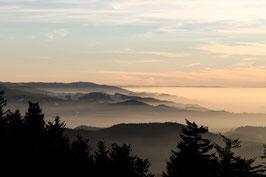 Heimat - Kandel, Schwarzwald