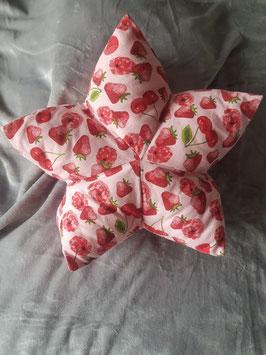Sternenkissen, Canvas Stoff, Motiv Erdbeeren u. Kirschen