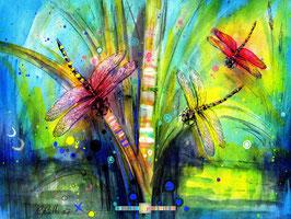 Libellen