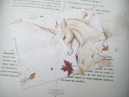 carte postale licorne des bois palomino