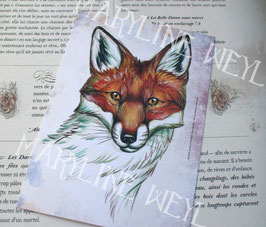 Carte Postale renard roux