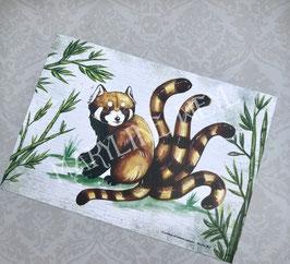 carte postale Panda Roux