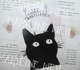 carte postale chat noir tête