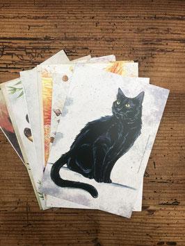 Lot de 15 cartes postales