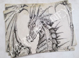 "Carte Postale Dragon ""le grimoire des dragons"""