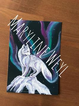 carte postale renard boréal
