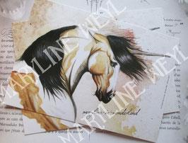 carte postale licorne des sables