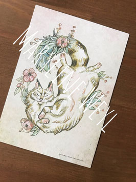 carte postale chat et fleurs