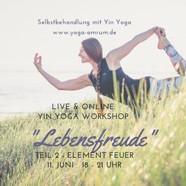11. Juni Yin Yoga Workshop - Teil 2