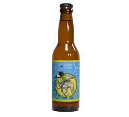 DON'T PANIC SESSION IPA – 33CL X 12