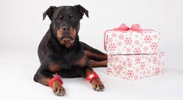 Weihnachtsgeschenk für Hunde 'Dreierlei'