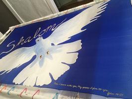 White Dove Shalom High Flyer/Billow