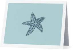 Sea Star Greeting Card