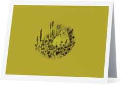 Bunny on Lichen Green Greeting Card