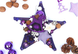 Stern in violett mit Schaukelpferd