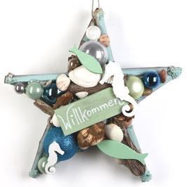 Grüner Stern mit Willkommensgruß