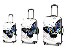 Set Mariposa Fly