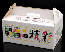 「精彩」平飼い有精卵<30個入>送料無料(北海道、沖縄は送料有料)