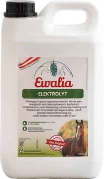 Ewalia Elektrolyt