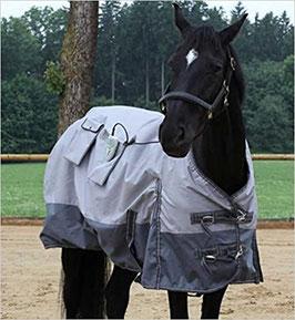MICH KANN MAN MIETEN: MAGMOBIL HORSE - Magnetfelddecke Pferd