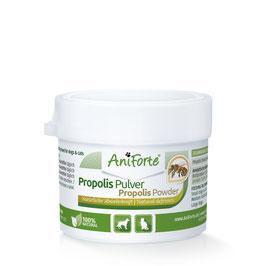 AniForte Propolis Pulver 20g