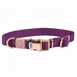 Weatherbeeta Elegance Hundehalsband purple