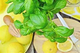Zitronen Basilikum Essig
