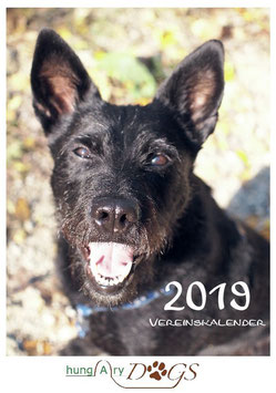Vereinskalender 2019