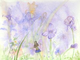 Lizzy's Garden