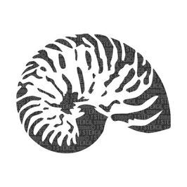 "Schablone ""Nautilus Shell"""