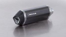 Remus Auspuff: Sportexhaust inkl. Katalysator (Euro 4) Carbon