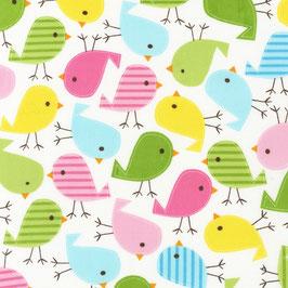 BW RK Urban Zoologie - birds