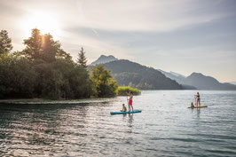 Stand Up Paddle Family Tour