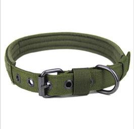 Hundehalsband oliv