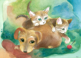 Katze und Welpen