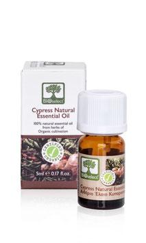 Zypresse – zertifiziert biologisch
