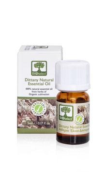 Diktamnus – zertifiziert biologisch