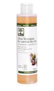 Olivenöl-Shampoo für normales & trockenes Haar