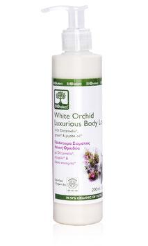 Luxuriöse Körpermilch mit weißer Orchidee
