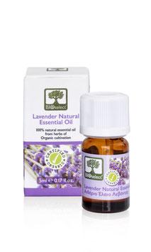 Lavendel – zertifiziert biologisch