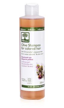 Olivenöl-Shampoo für coloriertes Haar