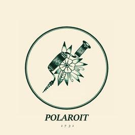 LP - Polaroit  - 1731