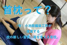 首枕Wモデル+専用の綿製BIGサイズ枕カバー付(税込)