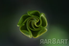 22 - grün, brauntöne